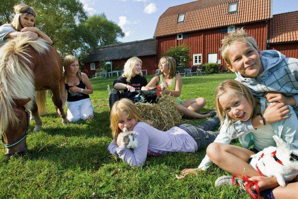 Семья шведов