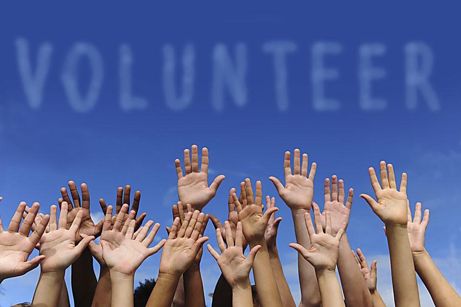 Руки волонтёров